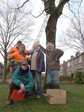 Vleermuizen kasten geplaatst in centrum Gorredijk
